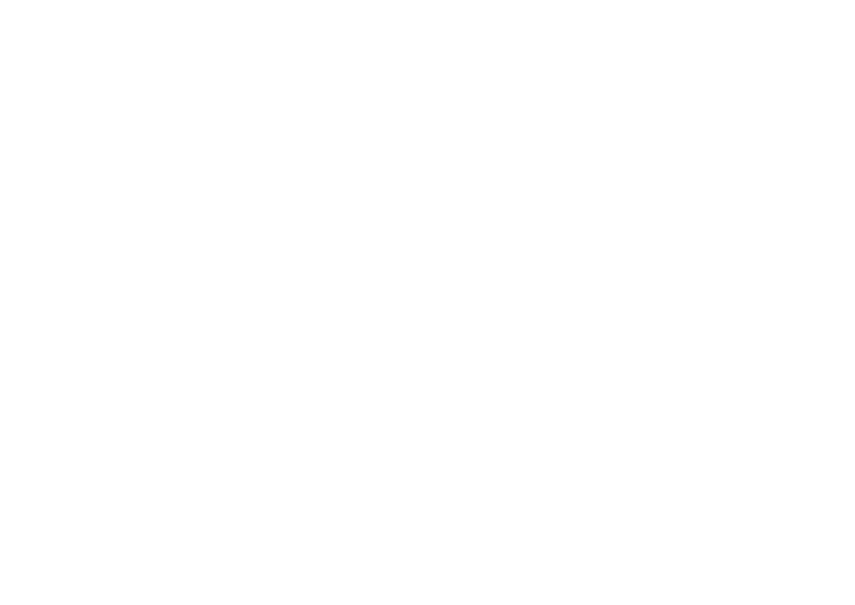 What the Falafel